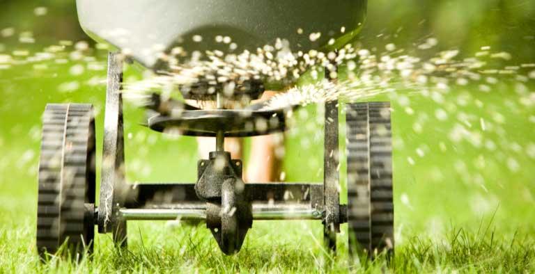 Как да поддържаме зелена тревата