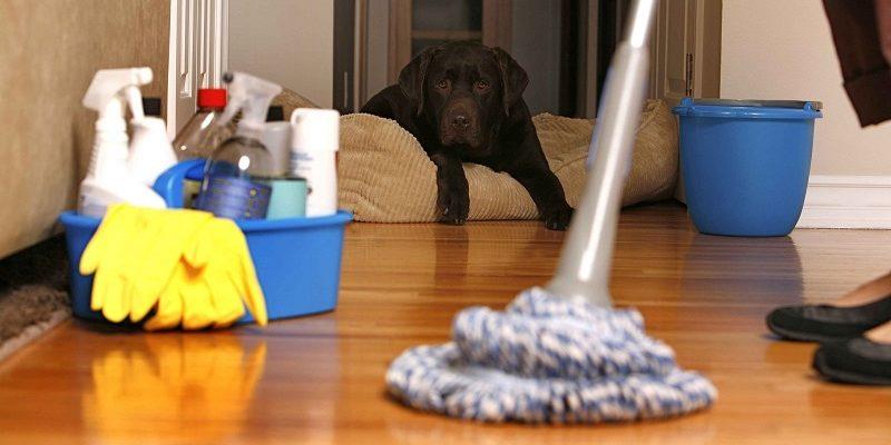 Топдом - почистване, дом, грешки
